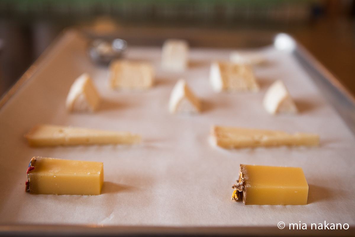 San Francisco Cheese School - 05 (2011)
